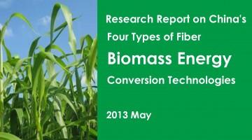 中国生物质能源转化技术研究报告